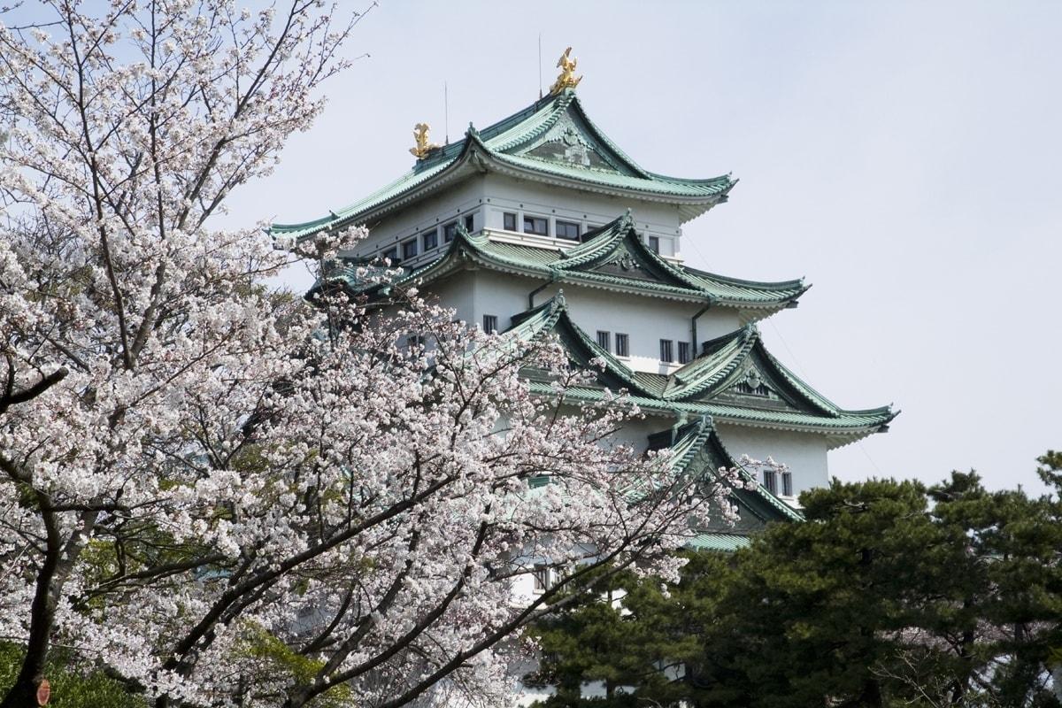 3. Nagoya Castle (Nagoya City, Aichi)