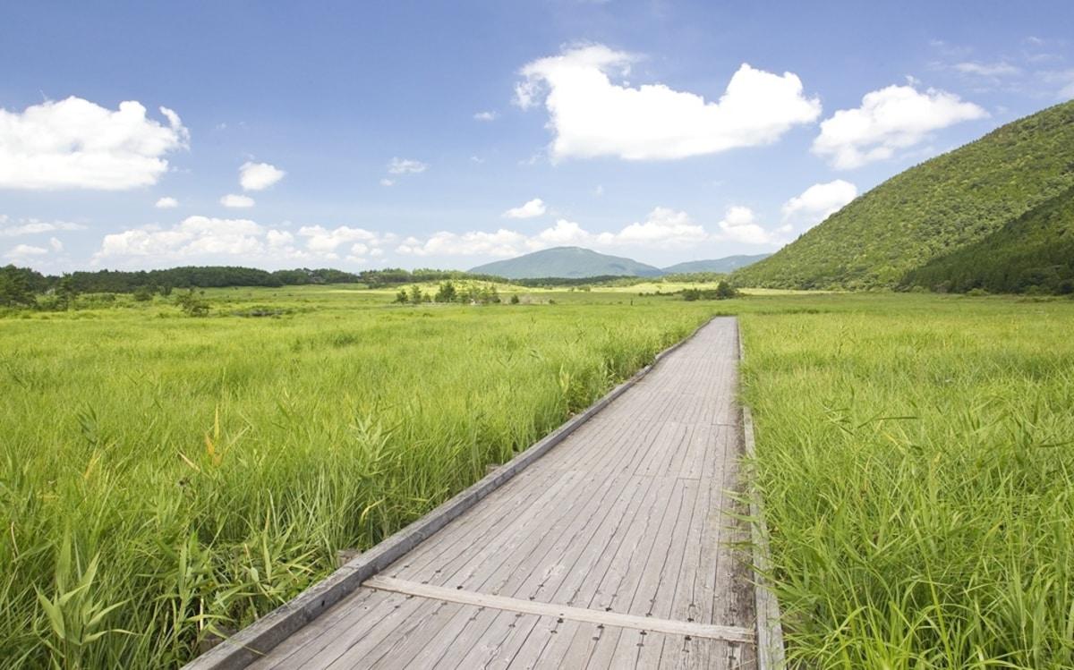 B.為您緩解疲勞的高原之綠與治愈系溫泉的線路(阿蘇-湯布院)