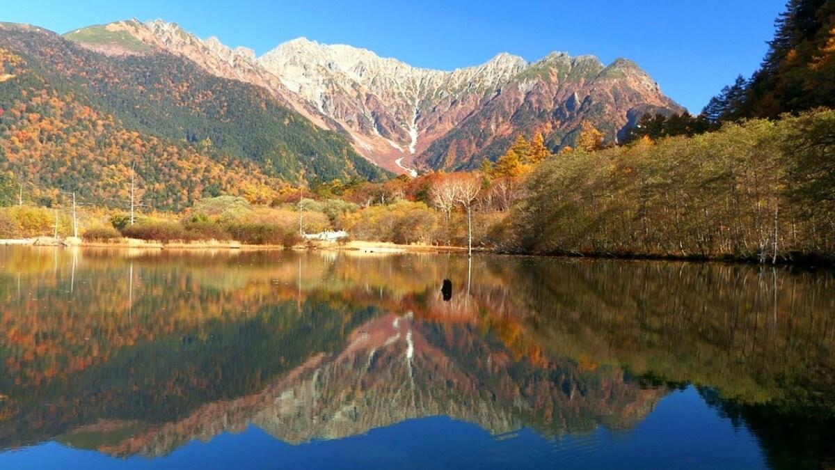 「上高地 紅葉」的圖片搜尋結果