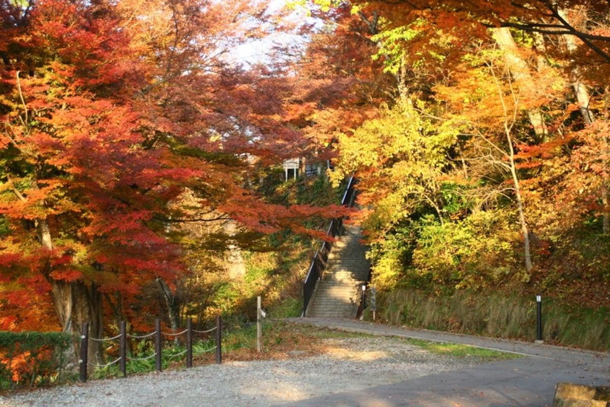 4. Shiroyama Park