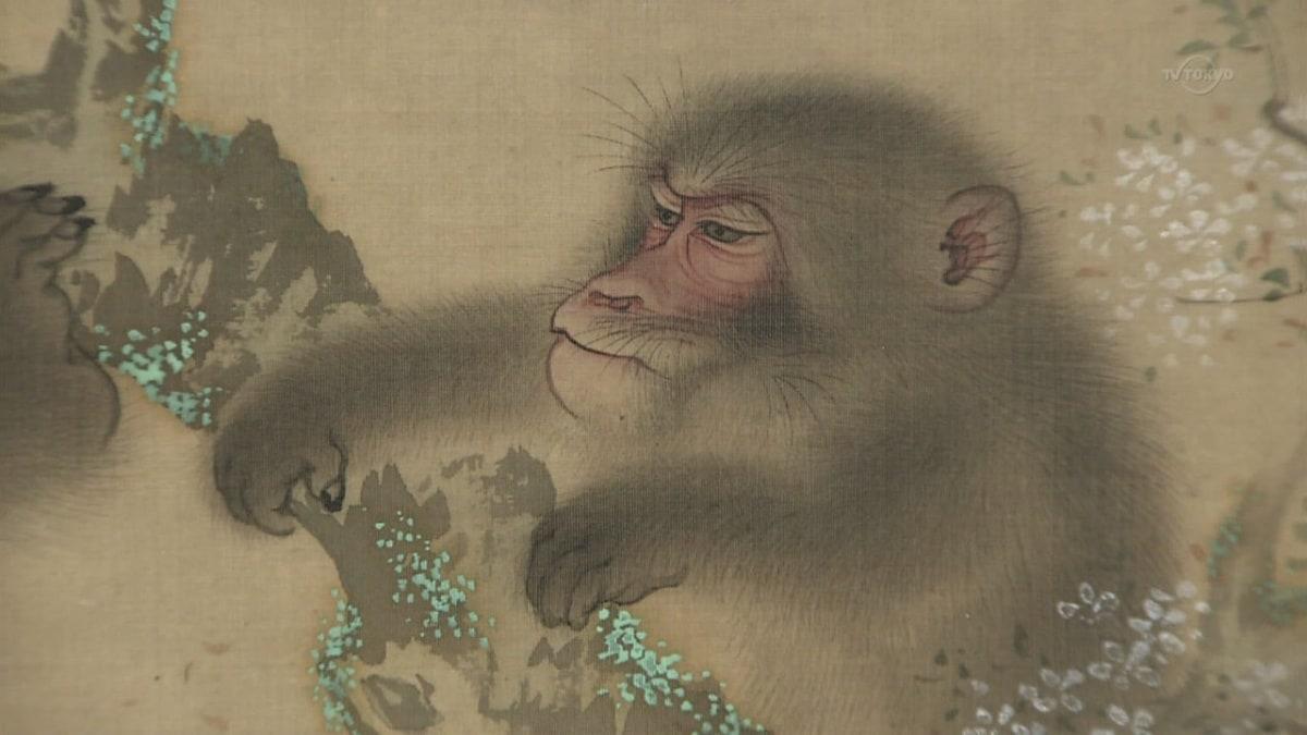 5. ลิง