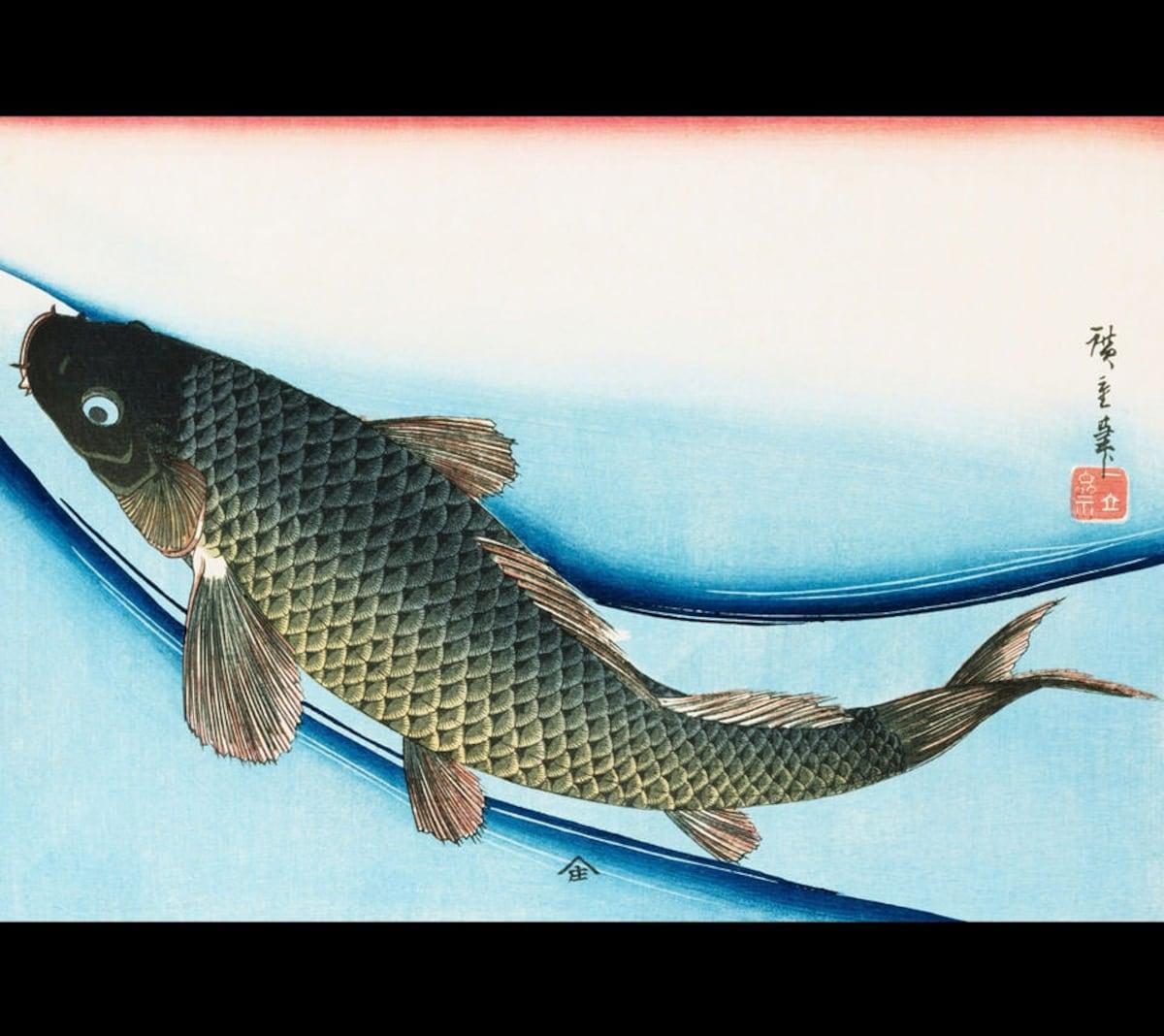 9. ปลาคาร์ป