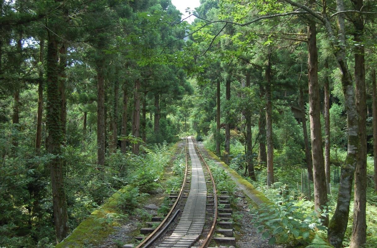 作為自然景區的屋久島