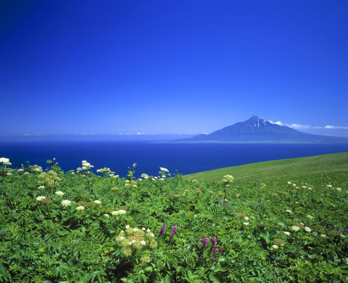 Rebun Island (Rebun)