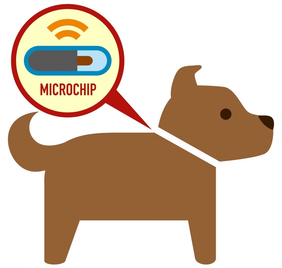1. Microchips