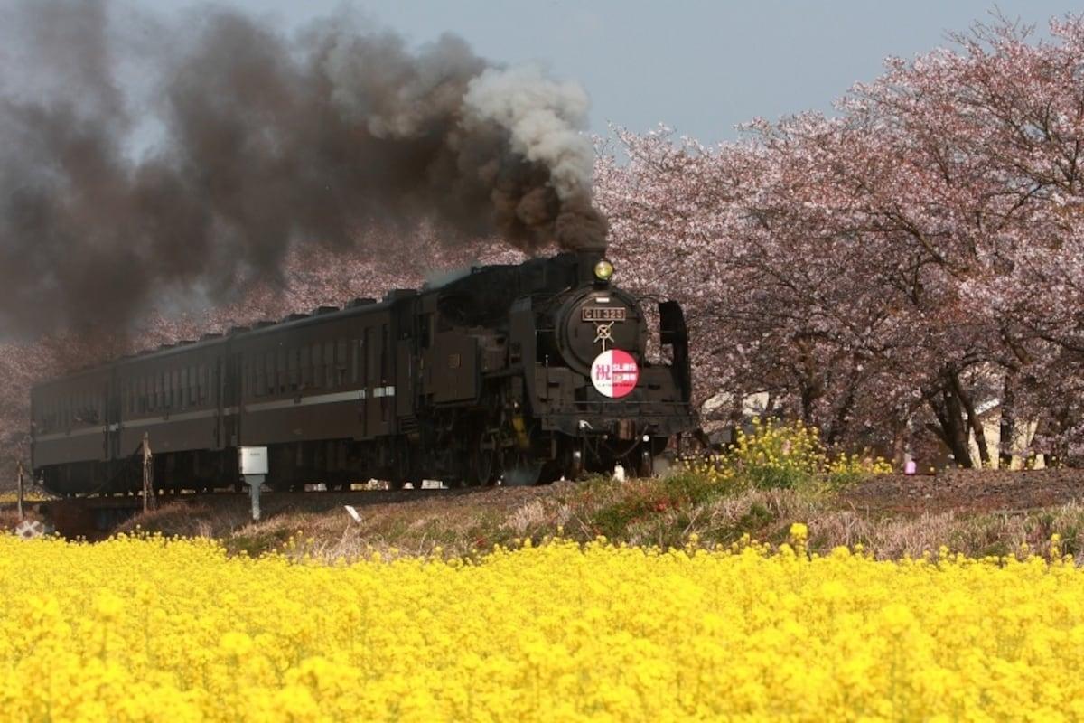 5. รถไฟ Mo-oka Tetsudo (Ibaraki-Tochigi)