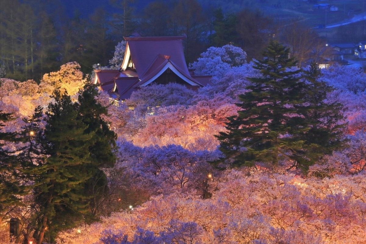 5. Takato Castle Ruins Park (Nagano)