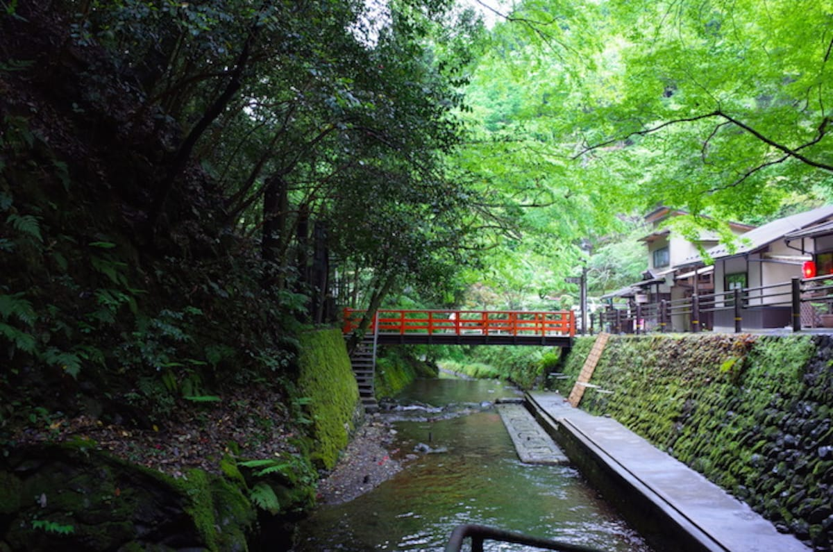 1. It's a rare chance to experience Kyoto in pleasant weather