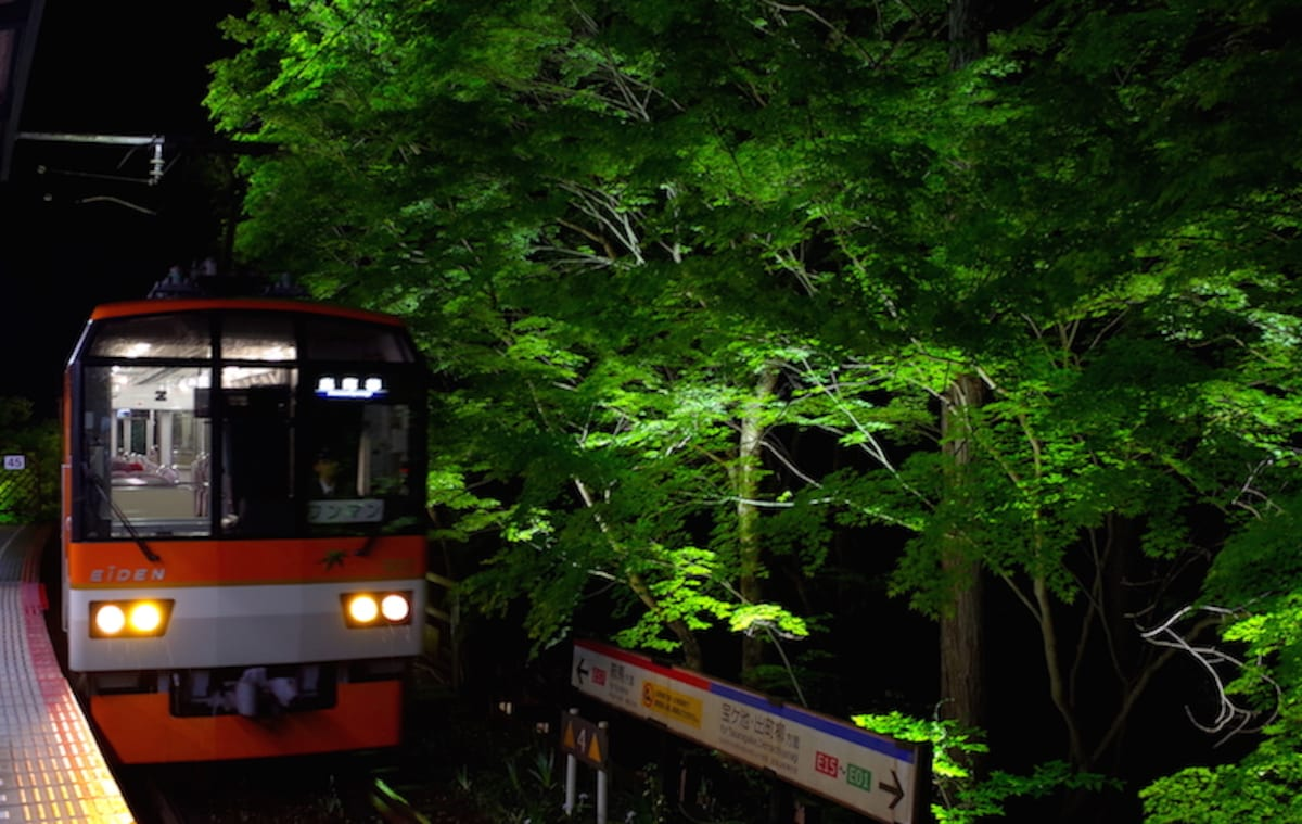 3. The limited-time maple light-up nighttime train ride