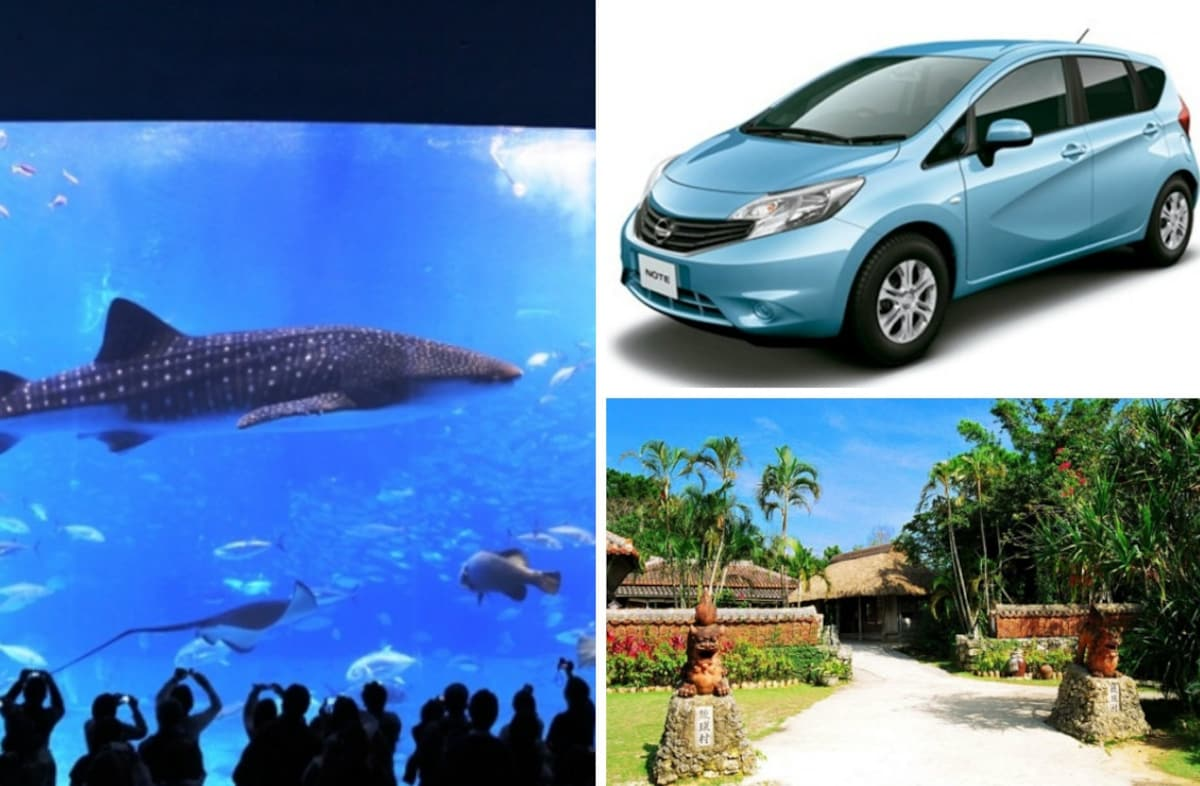 6. Full-Day Car Rental Service with Churaumi Aquarium Ticket from Naha Airport