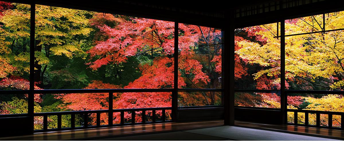 2. วัด Rurikō-in