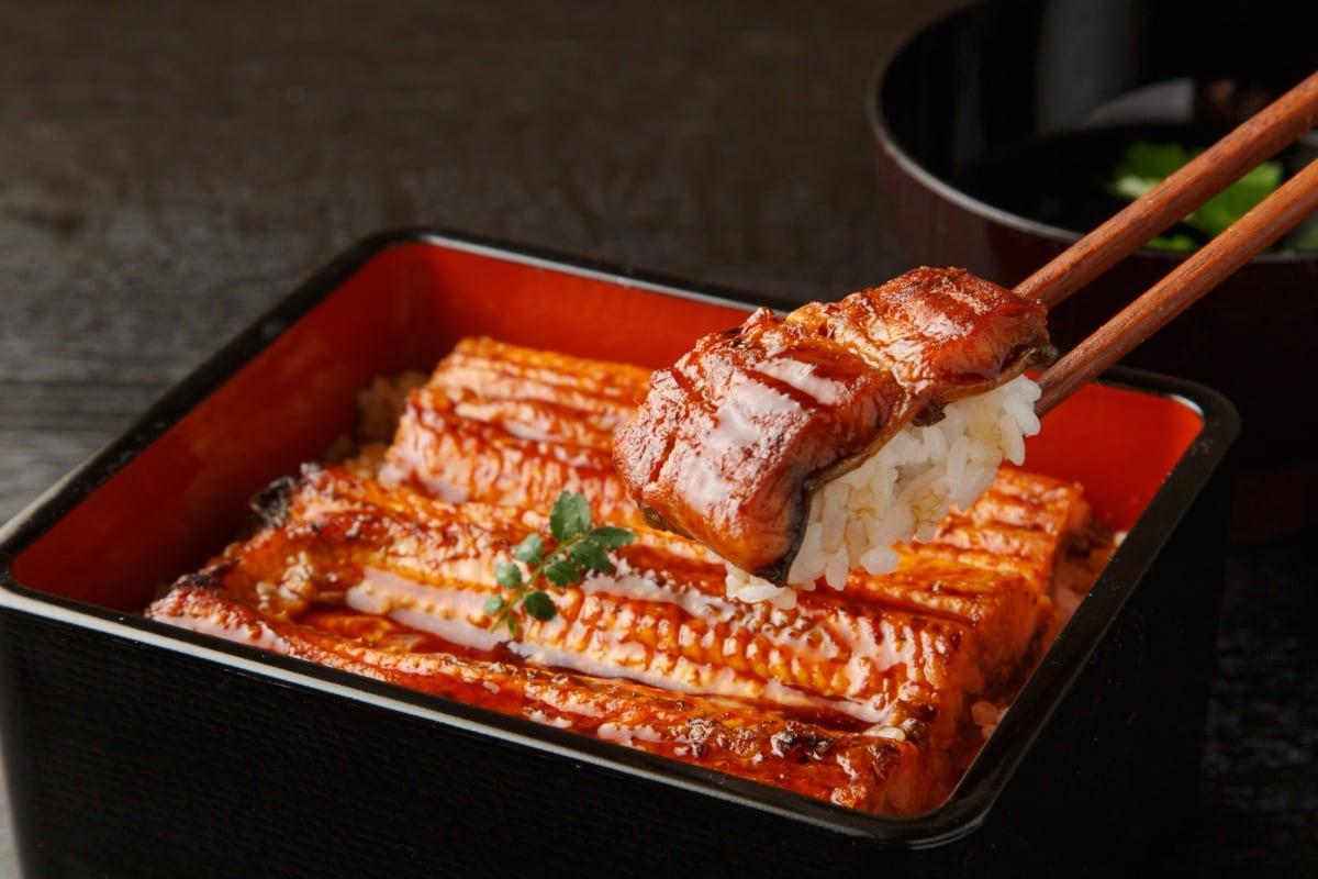 鮮甜脂香的天然鰻魚料理~鰻魚飯