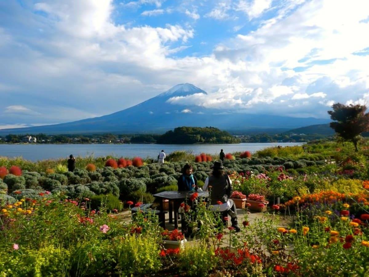 6. Appreciate the seasons at Oishi Park Kawaguchiko Natural Living Center