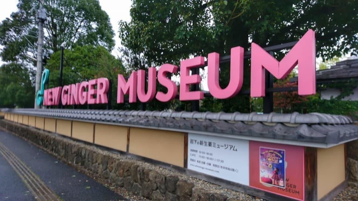 พิพิธภัณท์ New Ginger Museum