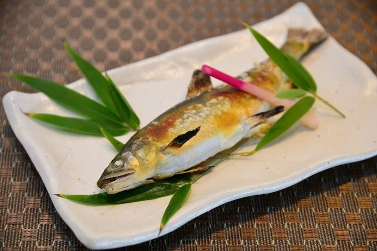 Shunji - Japanese Cuisine — Experience Seasonal Japan Year-Round