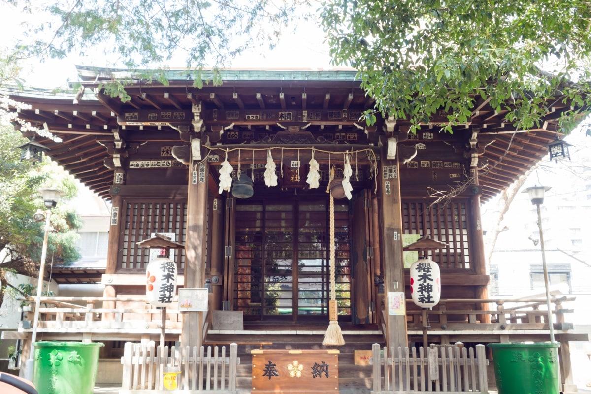 ▍千葉:櫻木神社