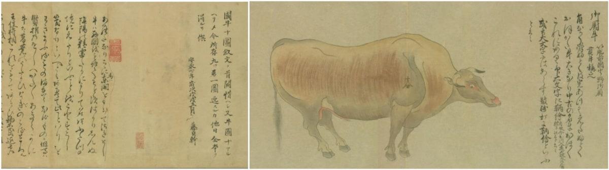 從〈國牛十圖〉看和牛最早的祖先