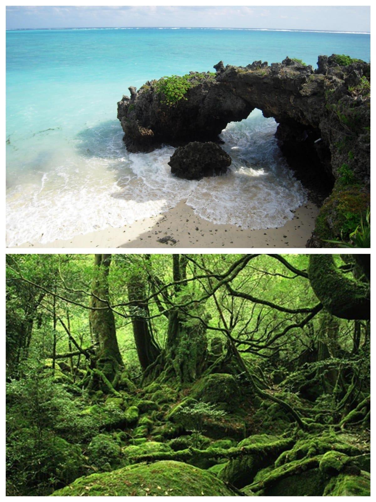 Kagoshima: the southern jewel of Kyushu