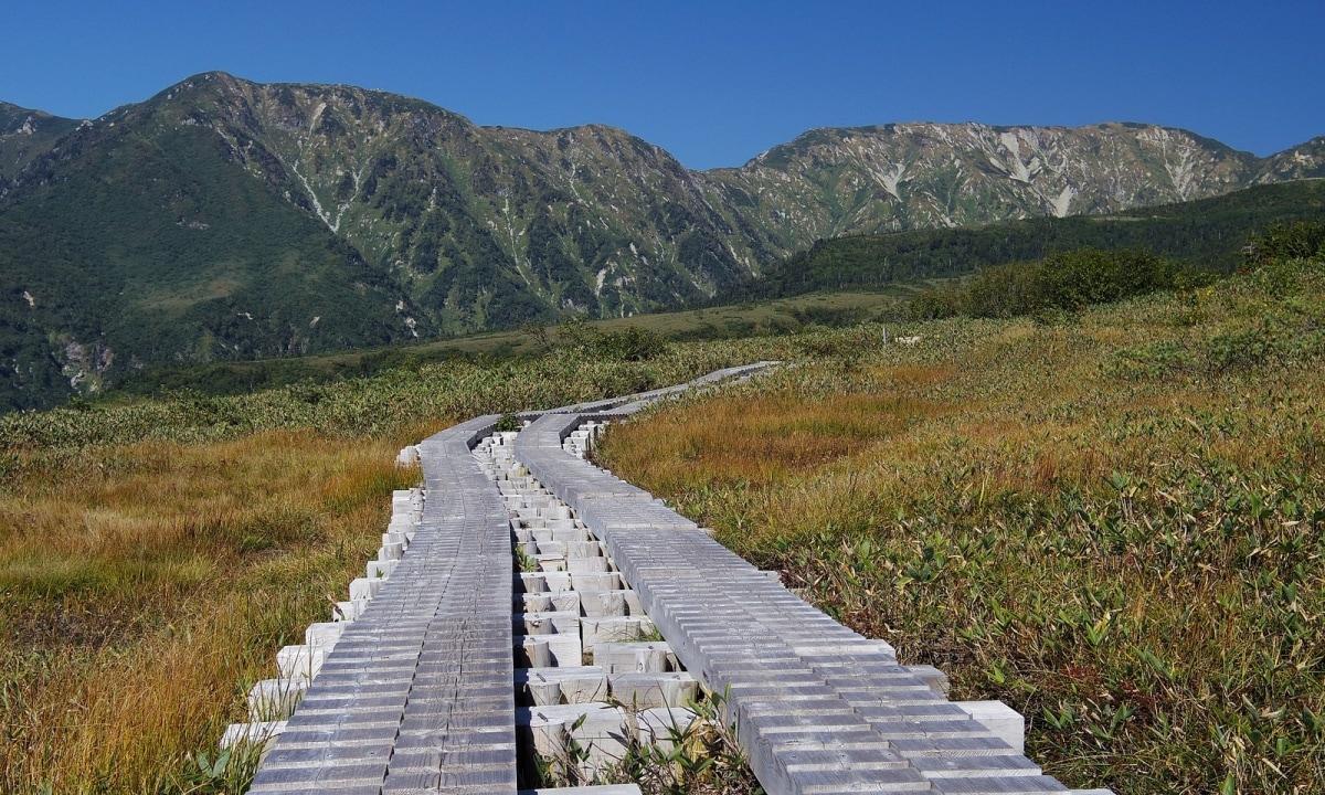 1. เส้นทางมิดากาฮาระ ทาเทยาม่า-คุโรเบะ อัลไพน์ (Midagahara Route, Tateyama-Kurobe Alpine)