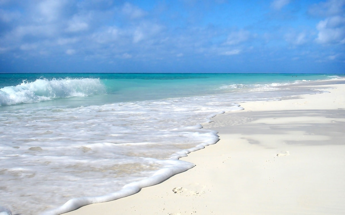 쿠라사키 해변