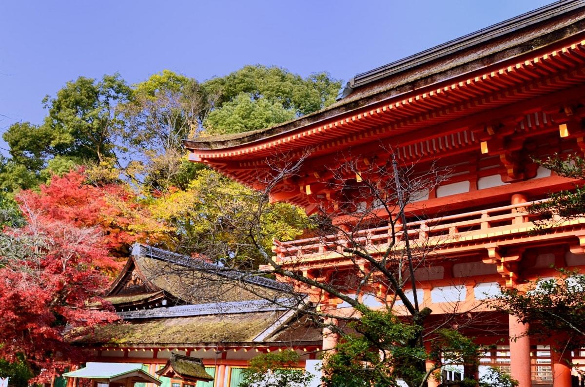 古老神社的自然能量