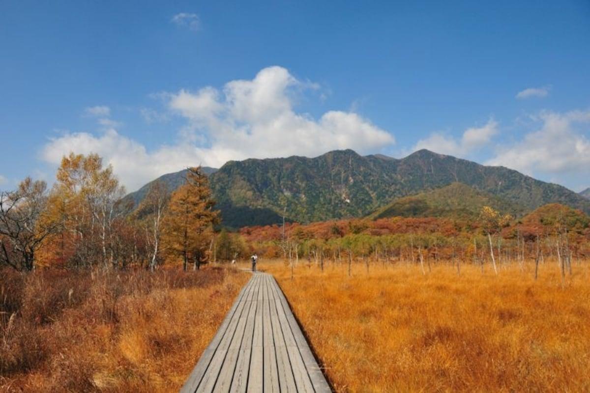 센조가하라 습지(10월 초순~하순)