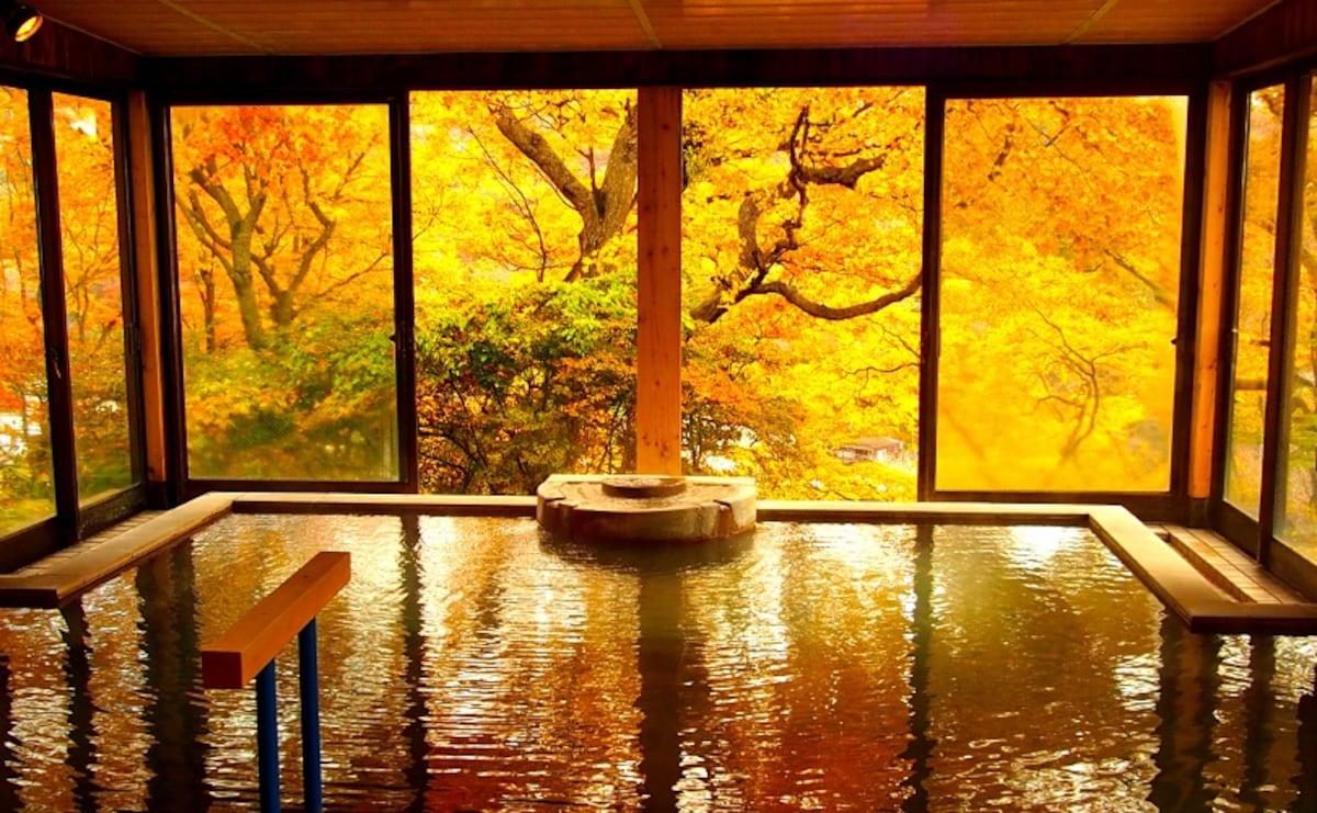1 Matsukawaya Nasukogen Hotel (Tochigi)