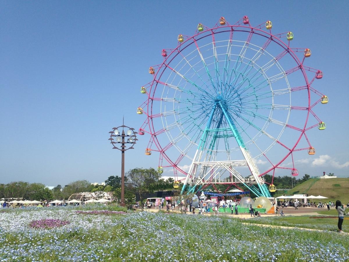 1. สวนอุมิโนะนากะมิชิ ซีไซด์ ปาร์ค จังหวัดฟุกุโอกะ (Uminonakamichi Seaside Park, Fukuoka)