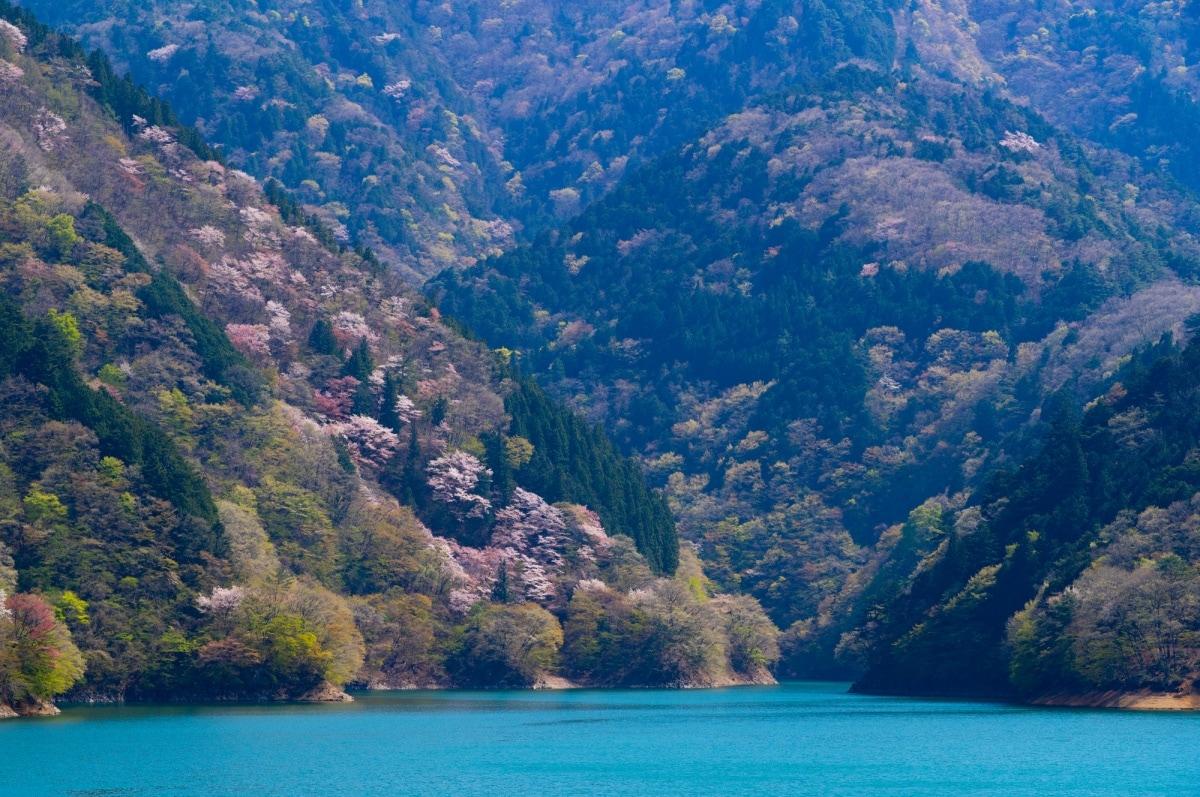 1 เขื่อนโอโงอุจิ (Ogouchi Dam)