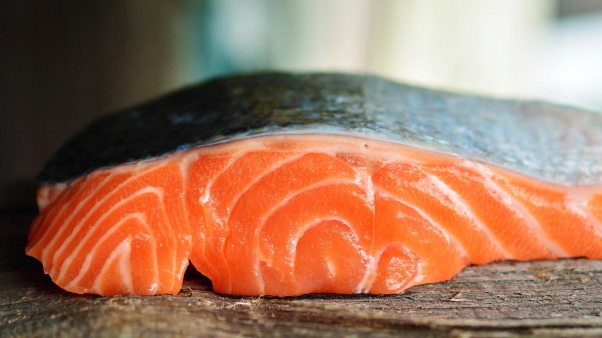 3. ปลาซาเกะ และ ปลาแซลมอน