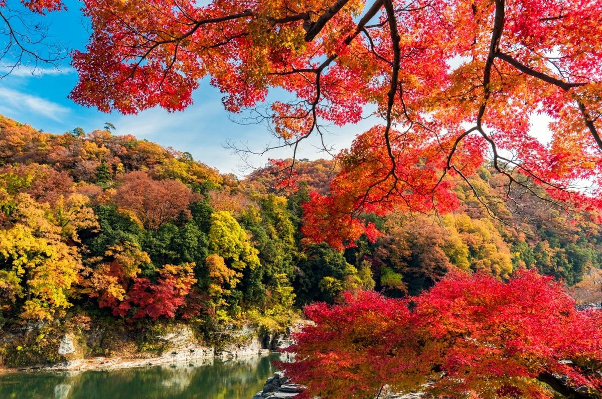 หุบเขานากาโทโระและหน้าผาอิวาดะทามิ (Nagatoro Valley & Iwadatami)
