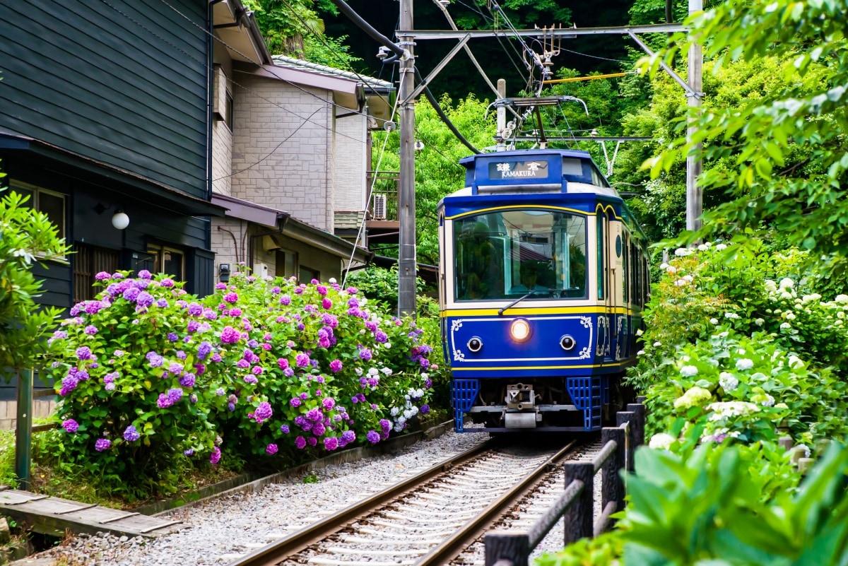 1. เมืองคามาคุระ จังหวัดคานากาวา (Kamakura, Kanagawa)