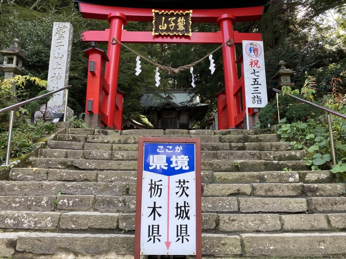 祈求金運與幸運的貓頭鷹神社「鷲子山神社」