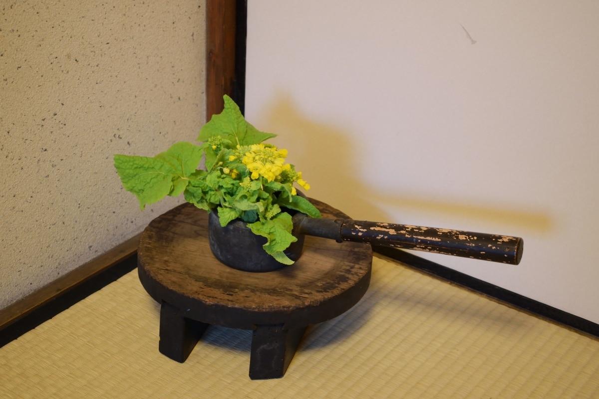 日本花道歷史:從唐朝供花文化所演化而來的傳統技藝