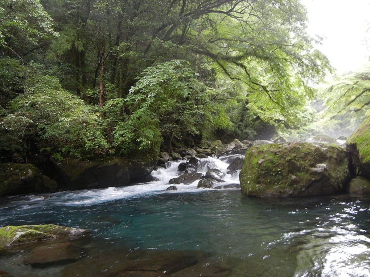 1. Kikuchi Valley