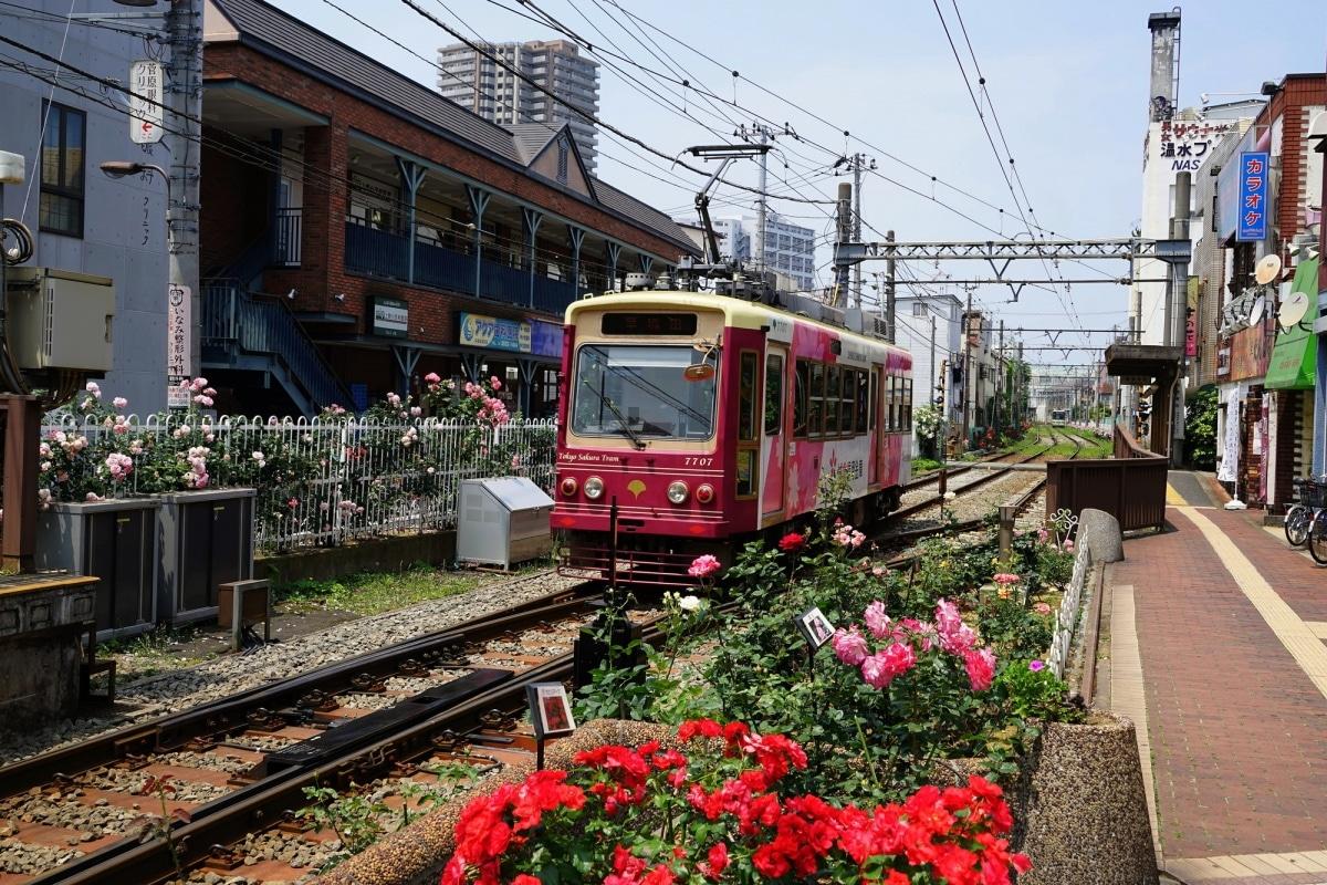[SA-01] สถานีมิโนวะบาชิ (Minowabashi Station)
