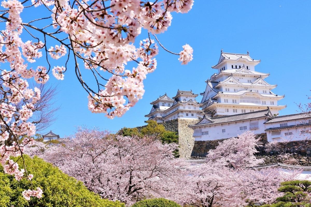 1. ปราสาทฮิเมจิ จังหวัดเฮียวโกะ (Himeji Castle, Hyogo)