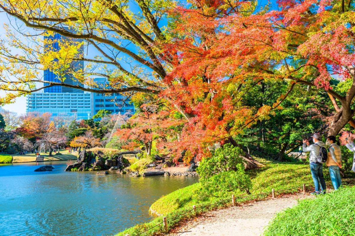 1. สวนโคอิชิคาวะ โคระคุเอ็น (Koishikawa Korakuen Garden)