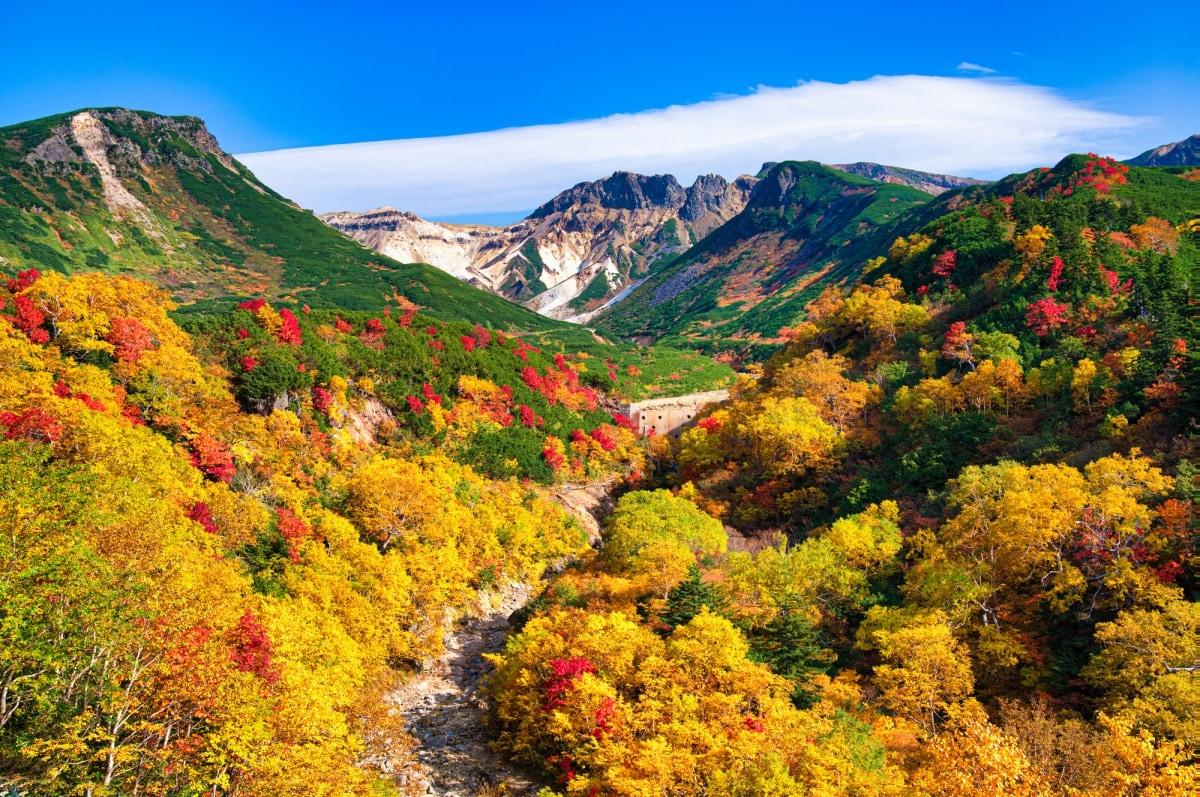 1. อุทยานแห่งชาติไดเซทสึซัง จ.ฮอกไกโด (Daisetsuzan National Park, Hokkaido)