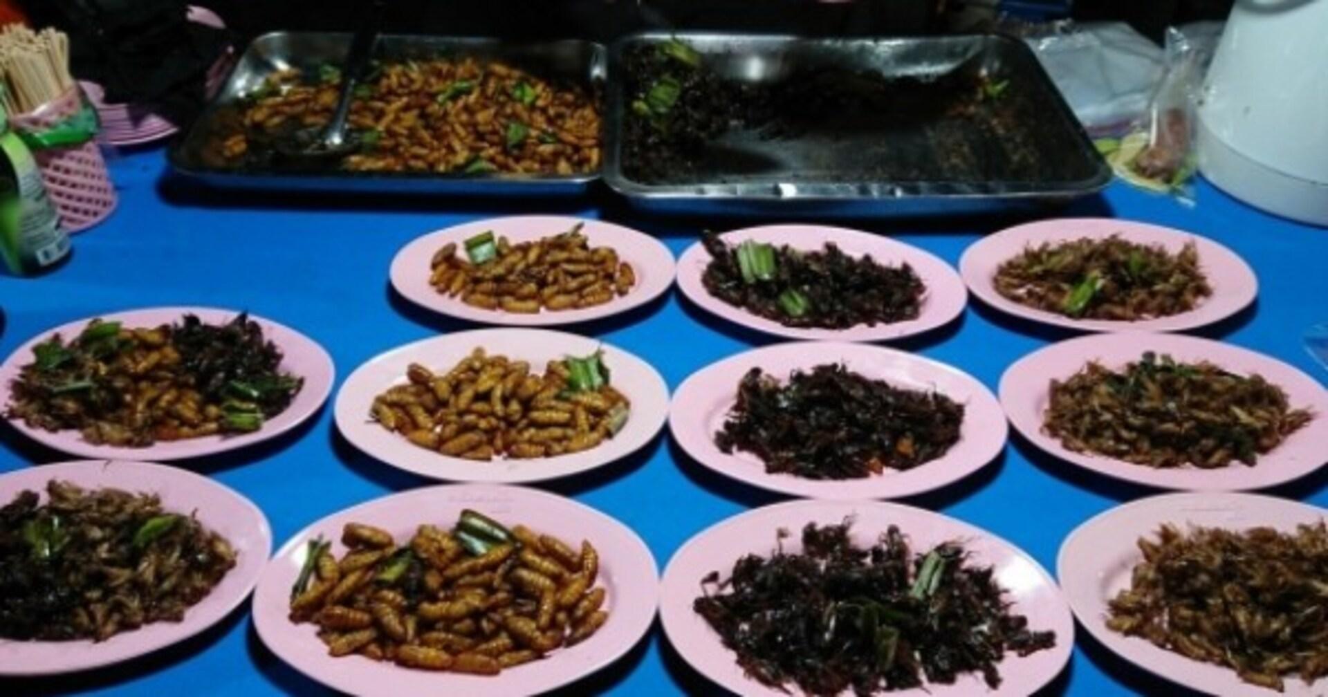 【閲覧注意】本当は美味しい「昆虫食」の世界 まるでマグロのトロやエビフライのようってホント?