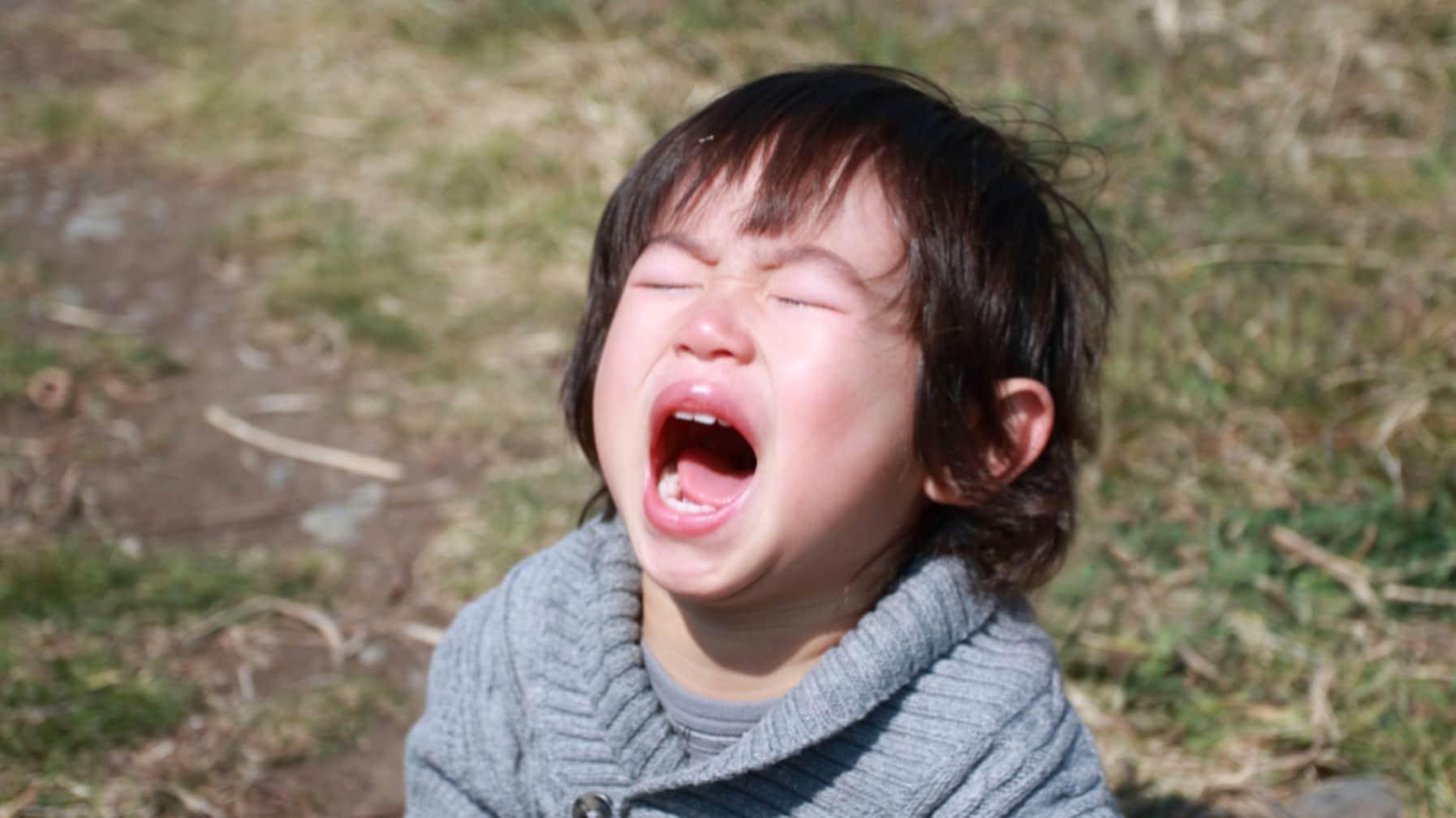 2歳児は「私は最強!」と思ってる時期だから…保健師が語る子どもが癇癪を起こした時の考え方が話題に