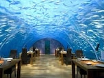 Ithaa Undersea restaurant(モルディブ)