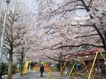 四谷から飯田橋に至る土手「外濠公園」(新宿区)