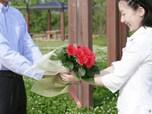 「石田純一」に見るプロポーズの極意