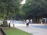 緑でこころを癒そう! 公園散歩の勧め