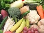 基礎的な健康維持が期待されるサプリメント