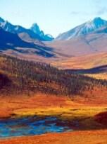夏ならではの絶景! 極北の地で楽しむ紅葉