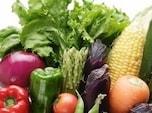 摂るべき基本の3大成分「水・食物繊維・酵素」でした!