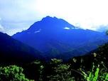 偉大なる自然を全身に感じて…スピリチュアルスポット、キナバル山 (マレーシア)