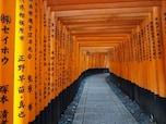 千本鳥居(伏見稲荷大社)/京都